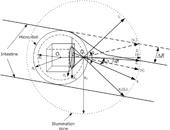Figure 2 From A Lumen Detection Based Intestinal Direction Vector