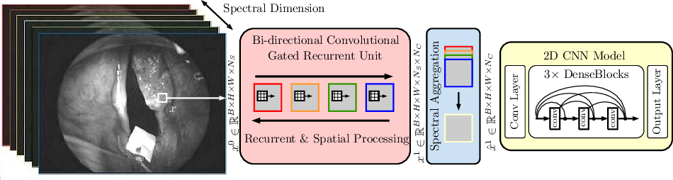 Figure 3 for Spectral-Spatial Recurrent-Convolutional Networks for In-Vivo Hyperspectral Tumor Type Classification