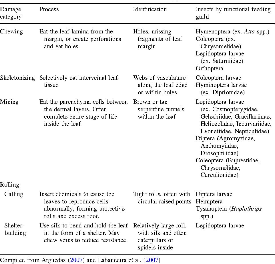 Foliar herbivory and leaf traits of five native tree species