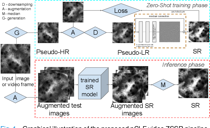 Figure 1 for Zero-shot super-resolution with a physically-motivated downsampling kernel for endomicroscopy
