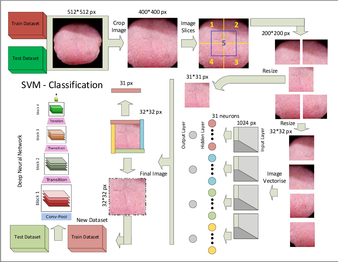 Figure 3 for Proposing method to Increase the detection accuracy of stomach cancer based on colour and lint features of tongue using CNN and SVM