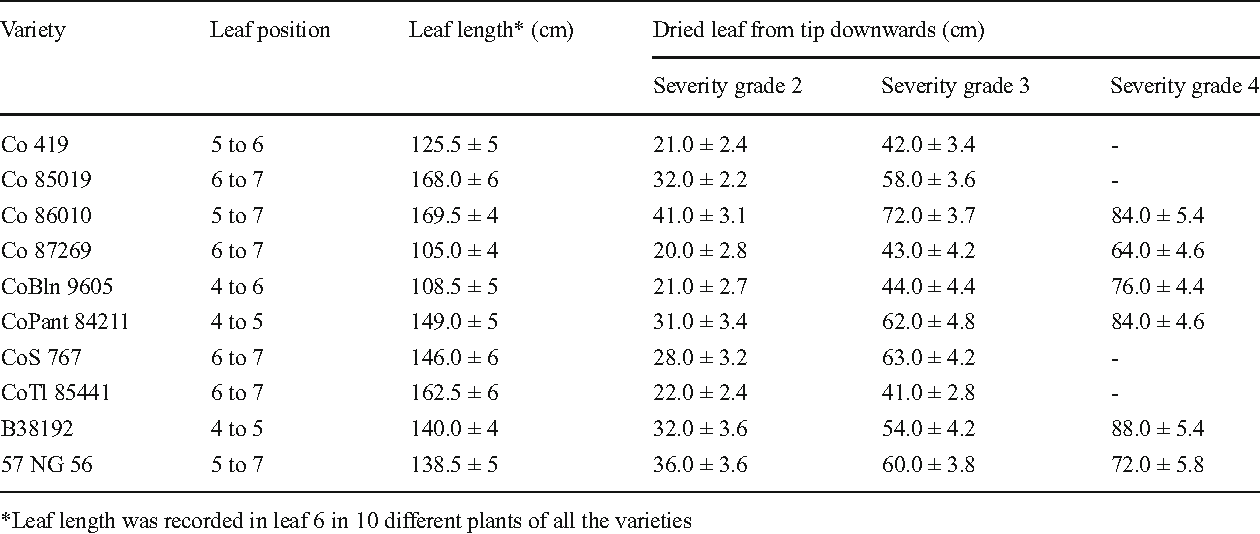 Table 2 from Variability in yellow leaf symptom expression
