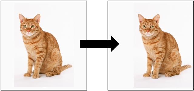 Figure 1 for Invariance reduces Variance: Understanding Data Augmentation in Deep Learning and Beyond