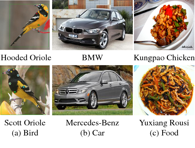 Figure 3 for Fully Convolutional Attention Networks for Fine-Grained Recognition