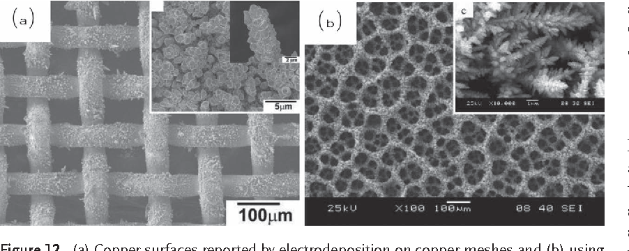 Figure 12 from Superhydrophobic surfaces by electrochemical