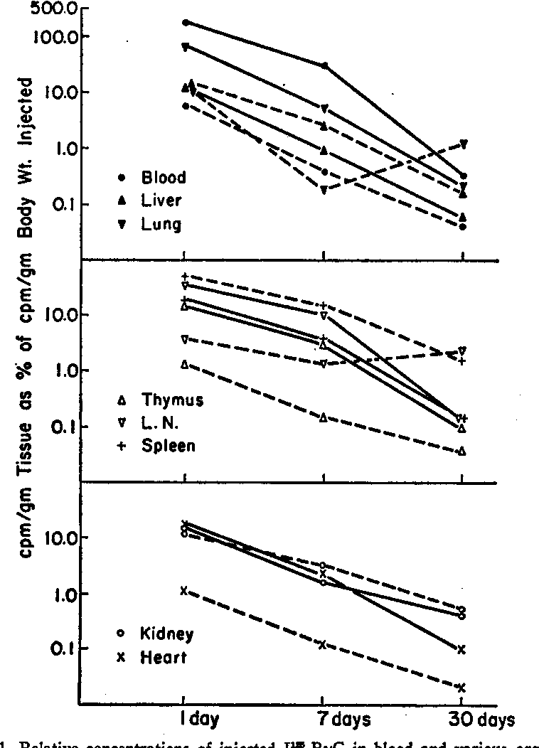 Figure 1 From Role Of The Thymus In Tolerance Vii Distribution Of