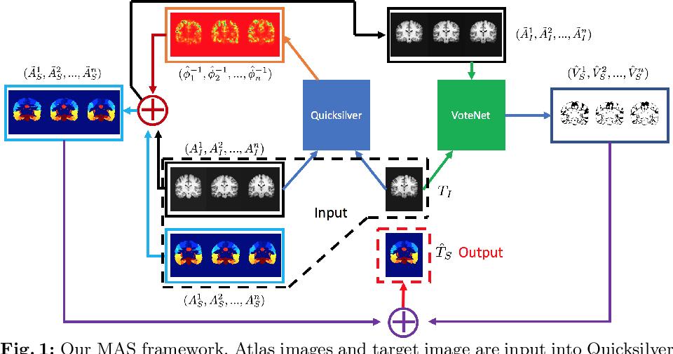 Figure 1 for VoteNet: A Deep Learning Label Fusion Method for Multi-Atlas Segmentation