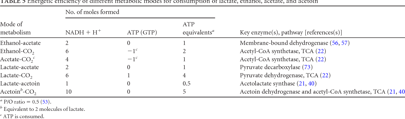 The Key To Acetate Metabolic Fluxes Of Acetic Acid Bacteria Under