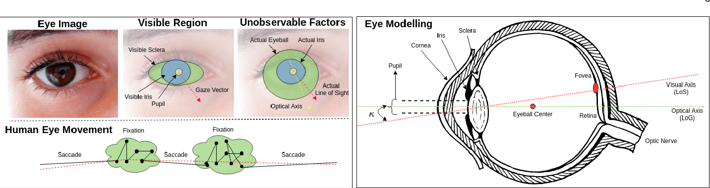 Figure 3 for Automatic Gaze Analysis: A Survey of Deep Learning based Approaches