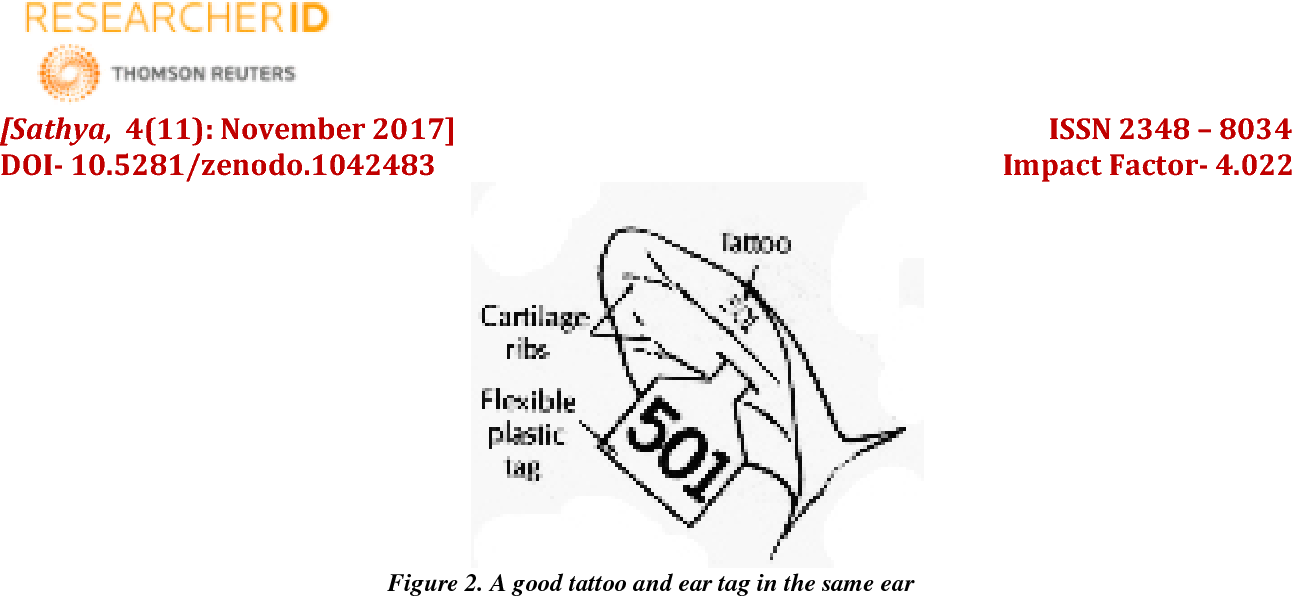 Figure 2 From Ournal Of E Ngineering S Cience And R Esearches Beef