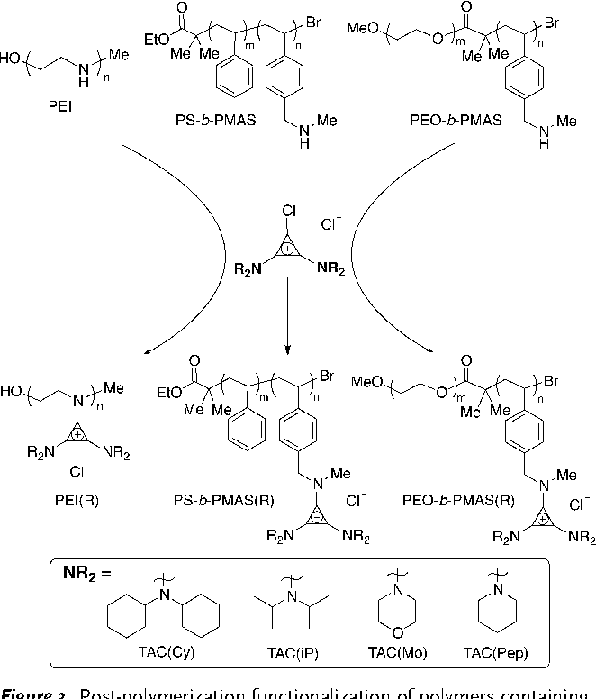 Figure 3. Post-polymerization functionalization of polymers containing secondary amines through the addition of BACCl ClickabILs.