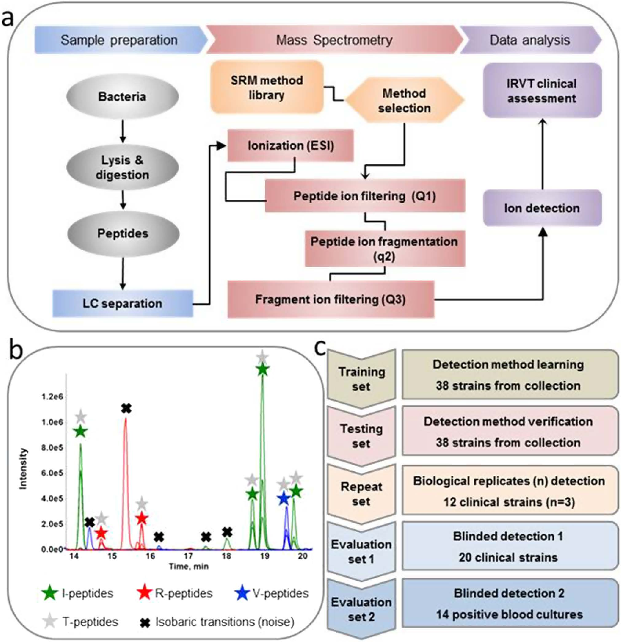 Rapid bacterial identification resistance virulence and type figure 2 ccuart Images