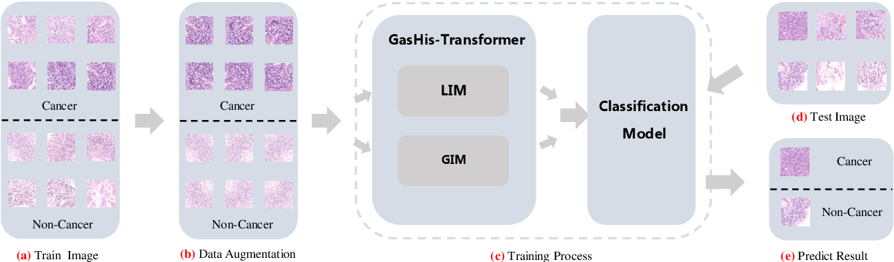 Figure 1 for GasHis-Transformer: A Multi-scale Visual Transformer Approach for Gastric Histopathology Image Classification