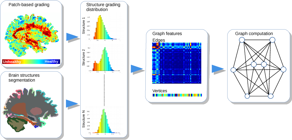 Figure 2 for Graph of brain structures grading for early detection of Alzheimer's disease