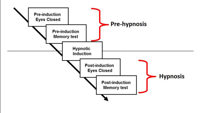 PDF] Hypnotic induction is followed by state-like changes in