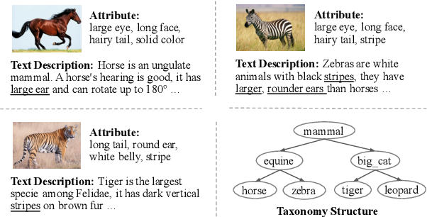 Figure 1 for Generative Adversarial Zero-shot Learning via Knowledge Graphs