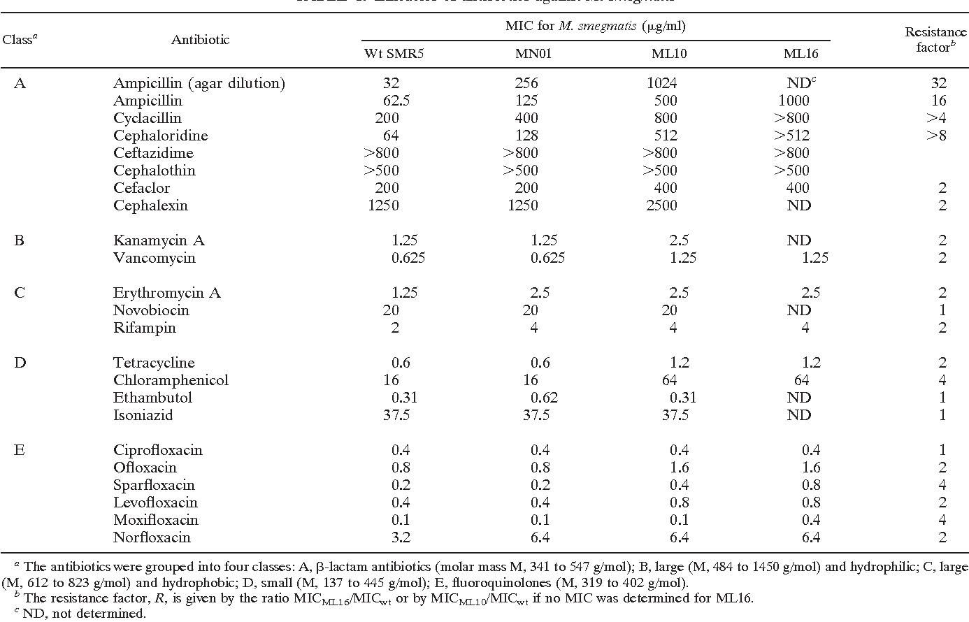 TABLE 1. Efficacies of antibiotics against M. smegmatis