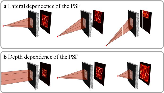 Figure 2 for DiffuserCam: Lensless Single-exposure 3D Imaging