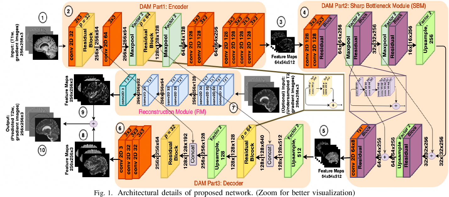 Figure 1 for Semantic Features Aided Multi-Scale Reconstruction of Inter-Modality Magnetic Resonance Images