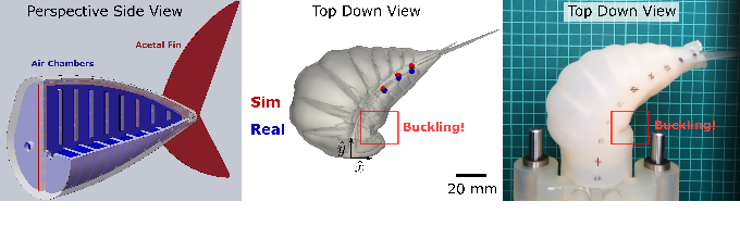 Figure 1 for Learning Material Parameters and Hydrodynamics of Soft Robotic Fish via Differentiable Simulation