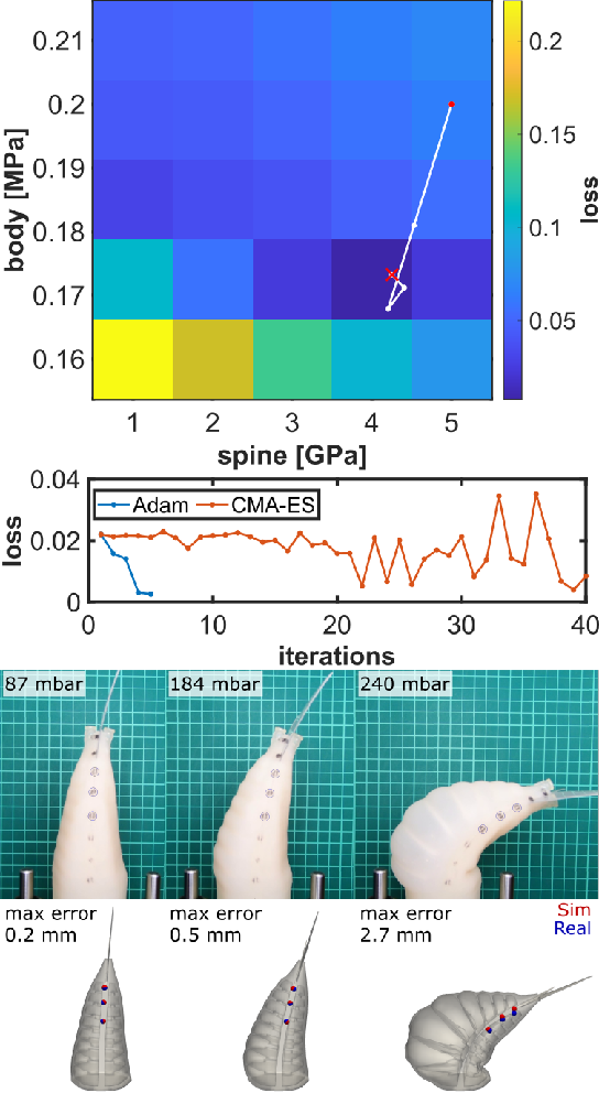 Figure 4 for Learning Material Parameters and Hydrodynamics of Soft Robotic Fish via Differentiable Simulation
