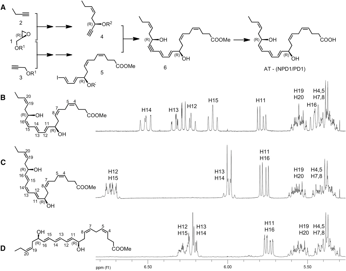 Figure 2. Strategy for the Total Organic Synthesis of Isomerically Pure Protectin Isomers and Their Stereochemical Assignment by NMR Spectroscopy