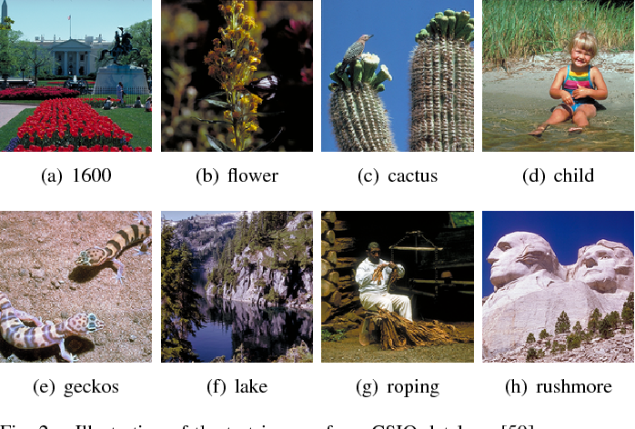 Figure 2 for Globally Variance-Constrained Sparse Representation and Its Application in Image Set Coding