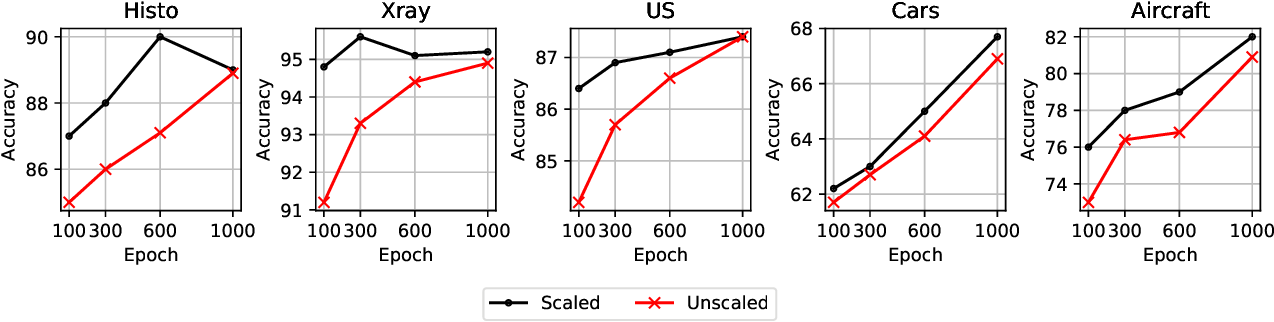 Figure 3 for Resource and data efficient self supervised learning