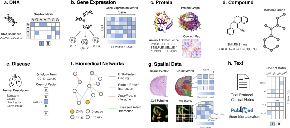 Figure 3 for Machine Learning Applications for Therapeutic Tasks with Genomics Data