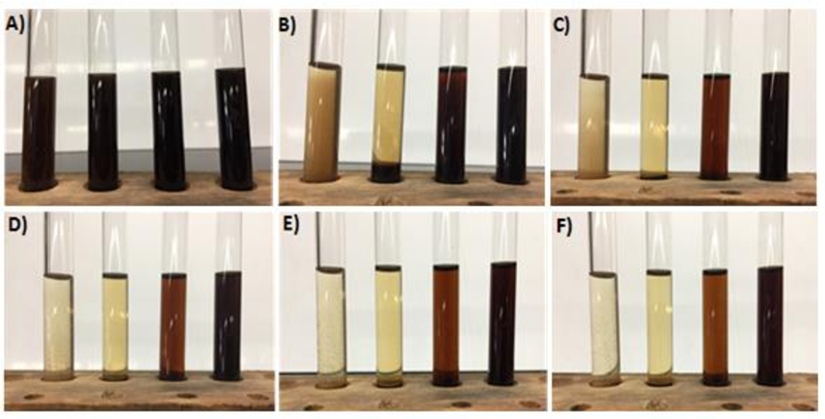 Figure 21: Flocculation analysis images of ester-modified humic acid mixtures. [Left to right] The C4E, C6E, C8E, and C10E-modified humic acid aliquots at A) time = 0, B) aliquots at time = 1 hour, C) aliquots at time = 8 hours, D) aliquots at time = 24 hours, E) aliquots at time = 48 hours, F) aliquots at time = 168 hours.