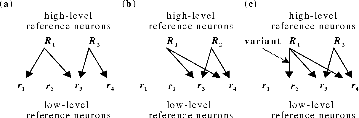Fig. 7. Evolutionary learning at the reference neuron layer.