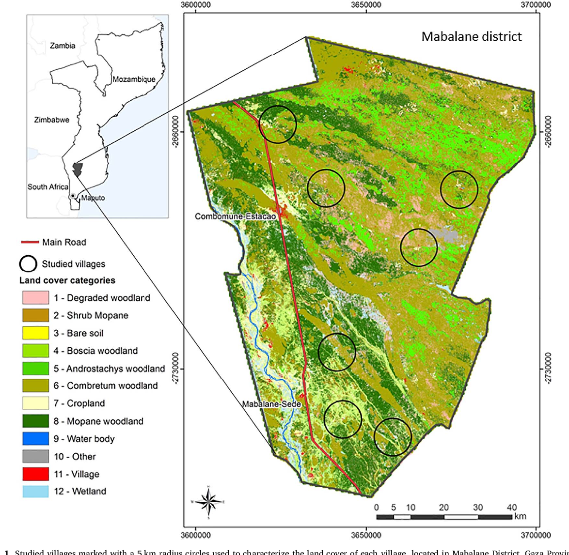 Fig. 1. Studied villages marked with a 5 km radius circles used to characterize the land cover of each village, located in Mabalane District, Gaza Province.