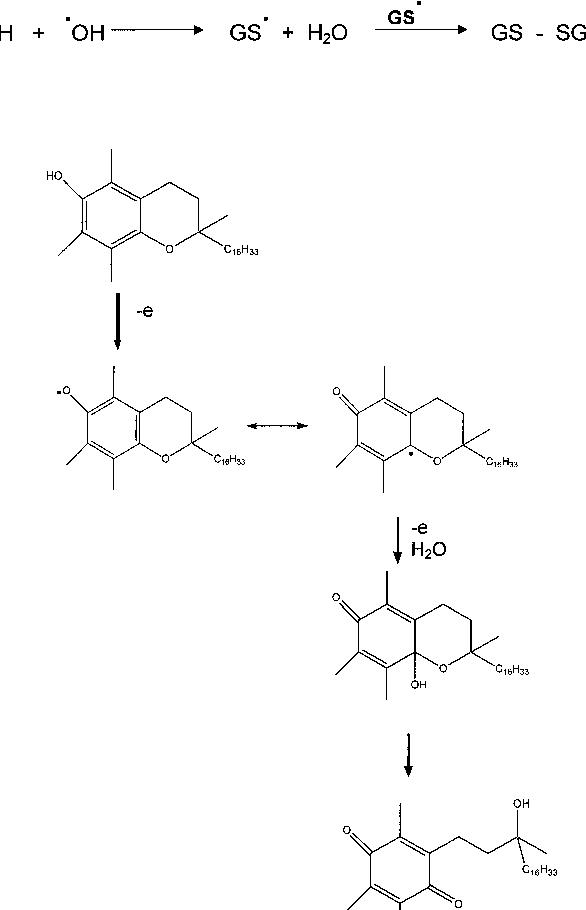frontiers of free radical chemistry pryor william