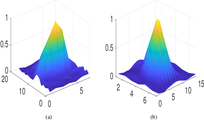 Figure 4 for Joint Blind Deconvolution and Robust Principal Component Analysis for Blood Flow Estimation in Medical Ultrasound Imaging
