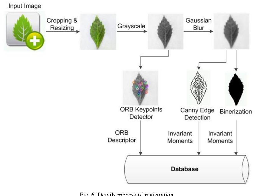 Figure 6 from Herbs Recognition Based on Android using OpenCV