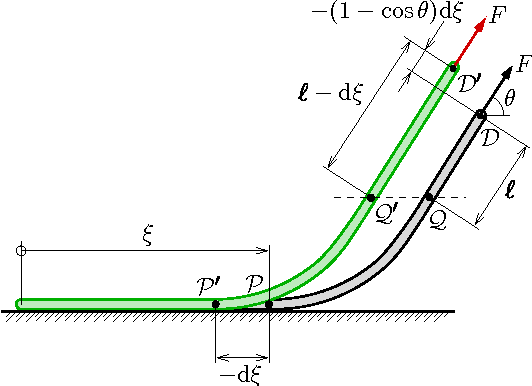 FIG. 5. (Color online) Peel-off geometry for a force F applied to the edge of an adhered film. The suspended part of the film traces an arc PQD in one instance. When a crack propagates a distance − dξ , the film assumes a new shape P ′Q′D′.