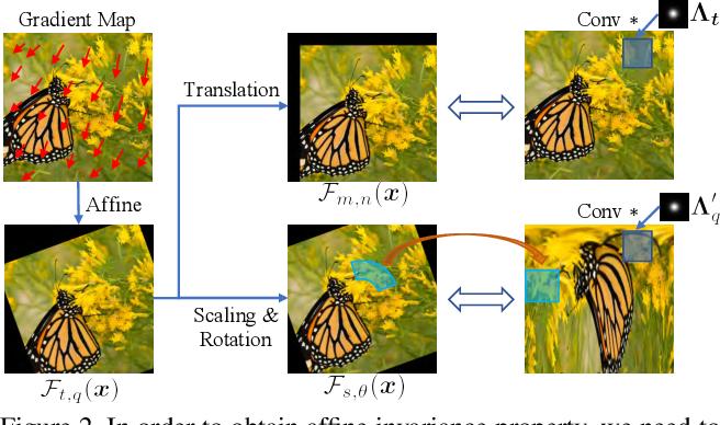 Figure 3 for Improving Robustness of Adversarial Attacks Using an Affine-Invariant Gradient Estimator
