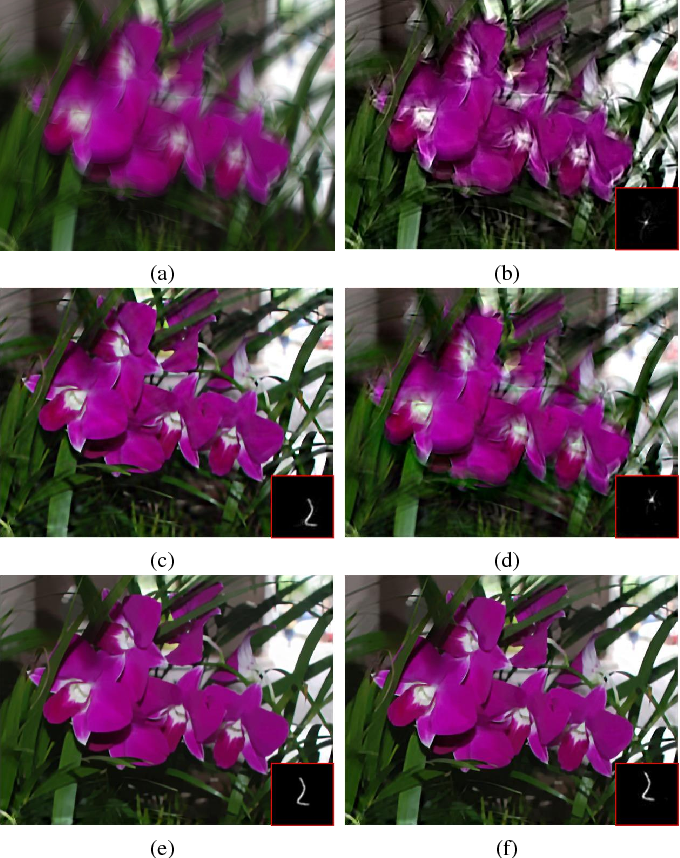 Figure 2 for Graph-Based Blind Image Deblurring From a Single Photograph