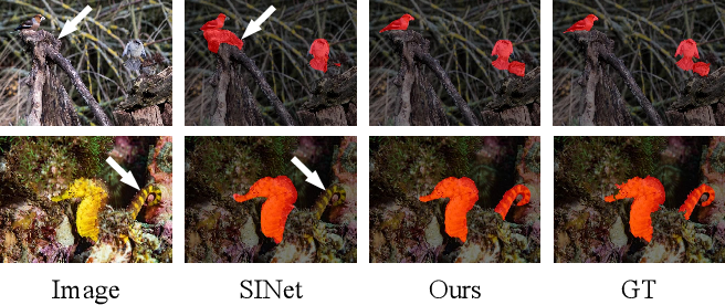 Figure 1 for Camouflaged Object Segmentation with Distraction Mining