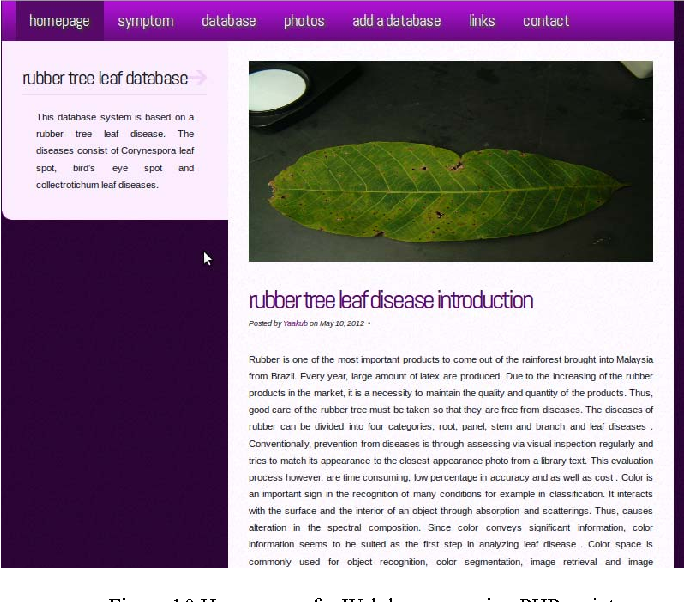 A development of online database system for rubber tree leaf