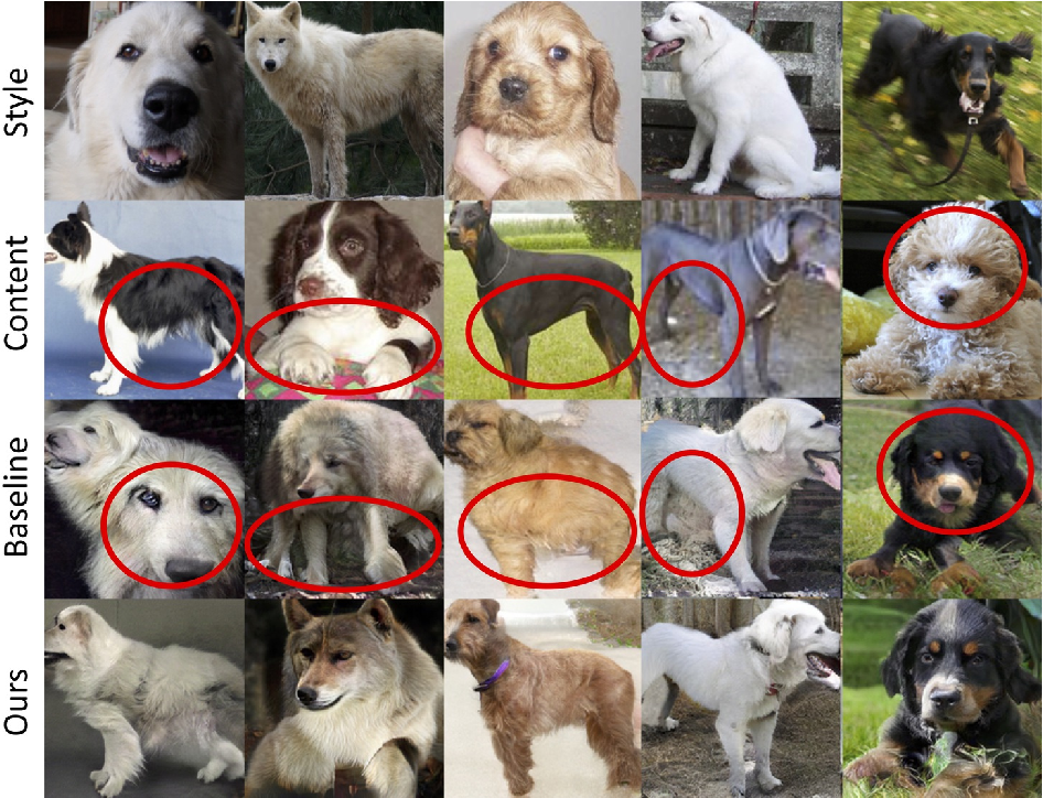 Figure 4 for COCO-FUNIT: Few-Shot Unsupervised Image Translation with a Content Conditioned Style Encoder