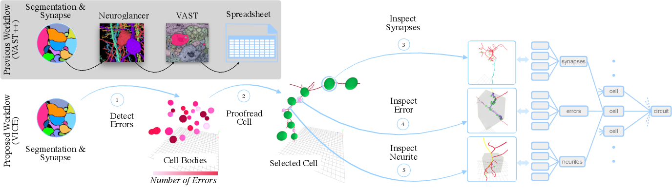 Figure 4 for VICE: Visual Identification and Correction of Neural Circuit Errors