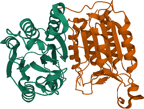 Figure 1 for Geometric Transformers for Protein Interface Contact Prediction