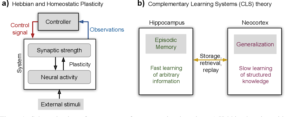 Figure 1 for Continual Lifelong Learning with Neural Networks: A Review
