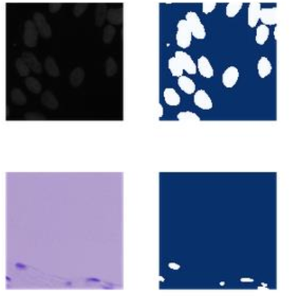 Figure 1 for Identify the cells' nuclei based on the deep learning neural network
