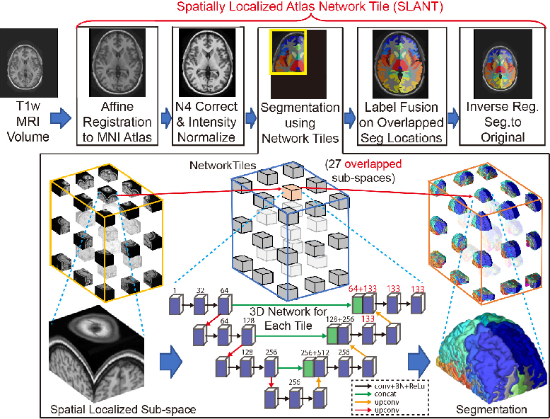 Figure 1 for Spatially Localized Atlas Network Tiles Enables 3D Whole Brain Segmentation from Limited Data