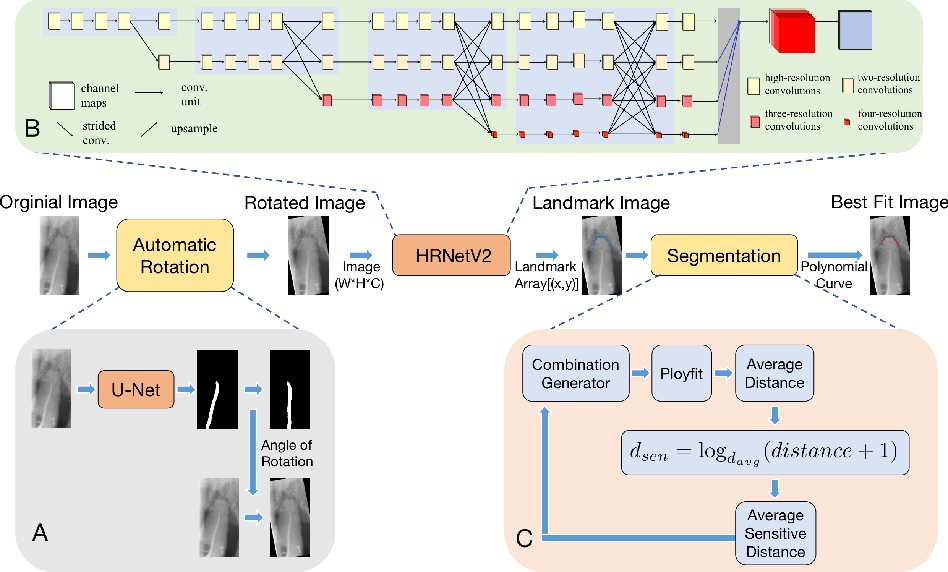 Figure 1 for High-Resolution Segmentation of Tooth Root Fuzzy Edge Based on Polynomial Curve Fitting with Landmark Detection