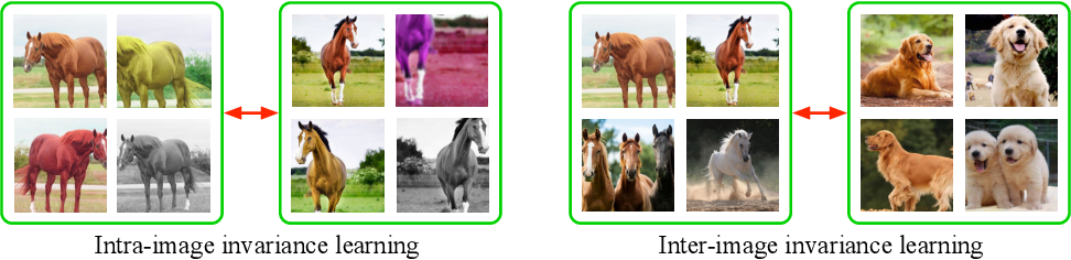 Figure 1 for Delving into Inter-Image Invariance for Unsupervised Visual Representations