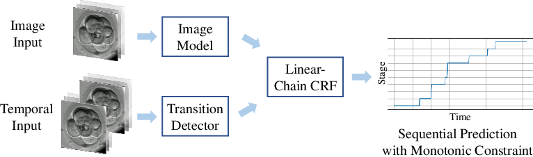 Figure 1 for Developmental Stage Classification of Embryos Using Two-Stream Neural Network with Linear-Chain Conditional Random Field