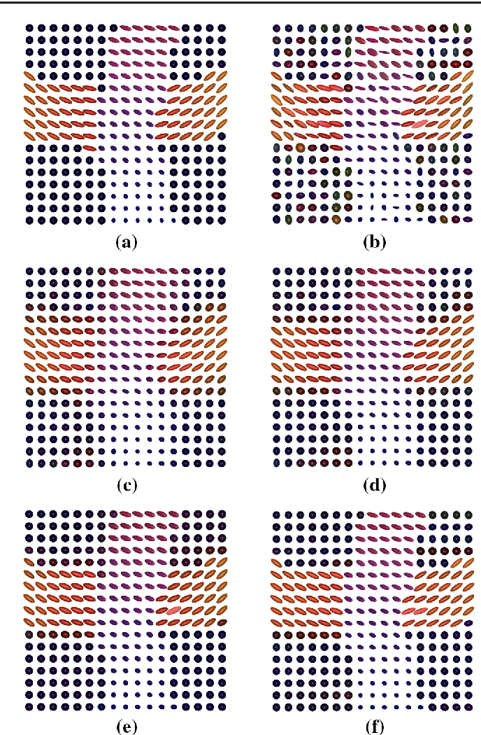 Figure 2 for Mumford-Shah and Potts Regularization for Manifold-Valued Data with Applications to DTI and Q-Ball Imaging
